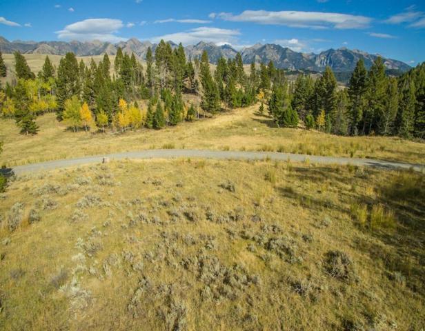 Lot 30 Elk Ridge Road, Other-See Remarks, MT 59720 (MLS #288630) :: Realty Billings