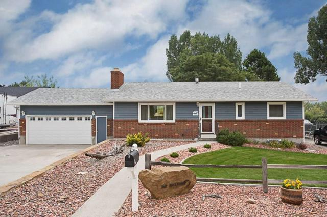 447 Killarney Street, Billings, MT 59105 (MLS #288640) :: Search Billings Real Estate Group