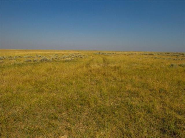 100 Oil Field Road, Roundup, MT 59072 (MLS #288664) :: Realty Billings