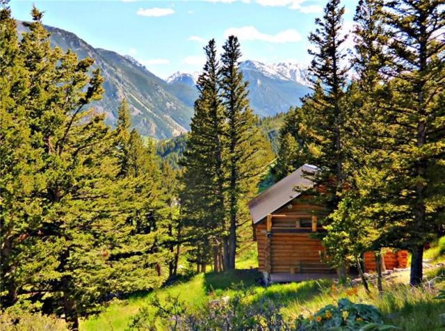 5 Forrest Trail, Nye, MT 59061 (MLS #288673) :: Realty Billings