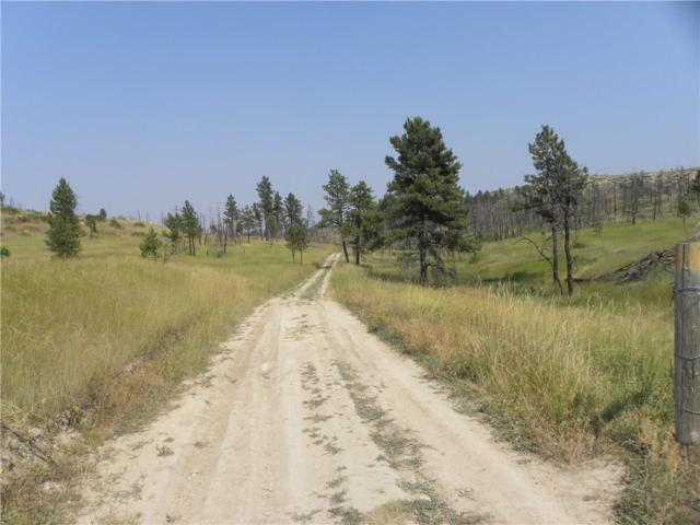 0 Blue Road, Roundup, MT 59072 (MLS #288736) :: The Ashley Delp Team