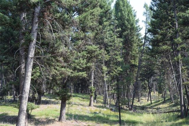 NHN Alpine Trails, Seeley Lake, Other-See Remarks, MT 59868 (MLS #288810) :: Realty Billings