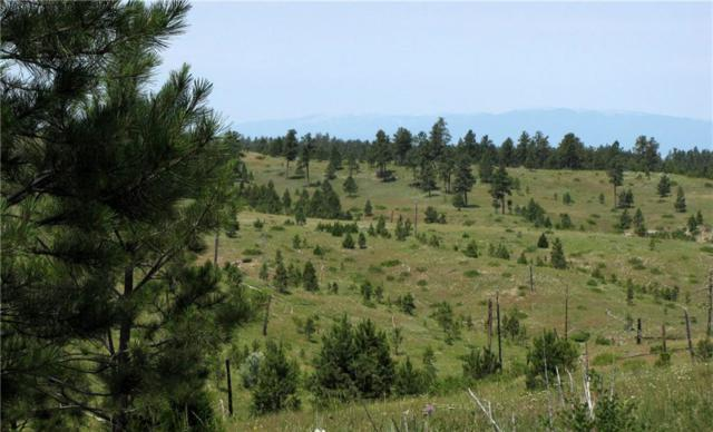 tbd Timberland Way, Roundup, MT 59072 (MLS #288821) :: Realty Billings