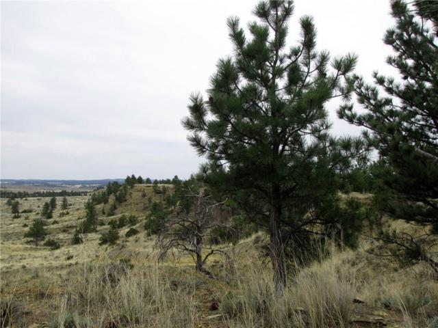 nhn Snowflake Road, Roundup, MT 59072 (MLS #289089) :: The Ashley Delp Team