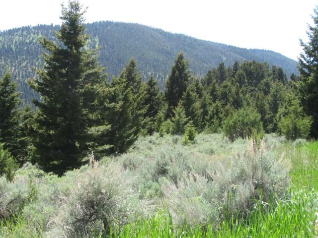 Lot 11 Elk View Road, Other-See Remarks, MT 59740 (MLS #289289) :: The Ashley Delp Team