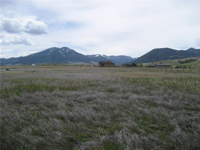 56 Big Sky Drive, Red Lodge, MT 59068 (MLS #289330) :: Realty Billings