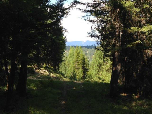 NHN Jim Creek Rd, Trego, Other-See Remarks, MT 59934 (MLS #289356) :: The Ashley Delp Team