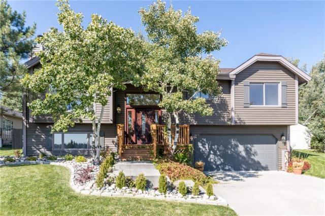 1233 Calico Ave, Billings, MT 59105 (MLS #289449) :: Realty Billings