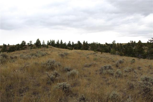 0 Dry Creek Rd, Molt, MT 59037 (MLS #289493) :: Realty Billings