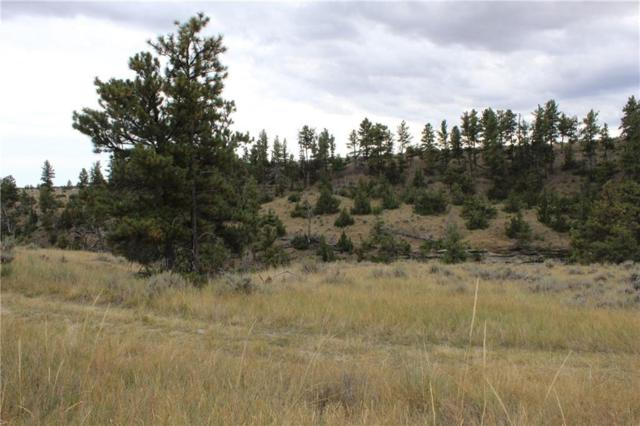 0 Dry Creek Rd, Molt, MT 59037 (MLS #289495) :: Realty Billings