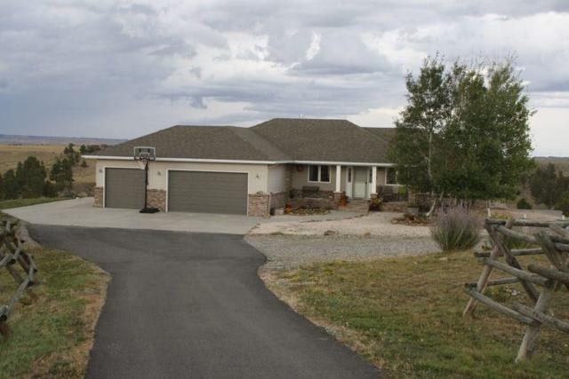 4250 Lone Eagle Drive, Billings, MT 59016 (MLS #289524) :: Realty Billings