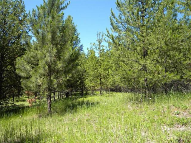 1980 Lower Lost Prairie Road, Marion, Other-See Remarks, MT 59925 (MLS #289573) :: Search Billings Real Estate Group