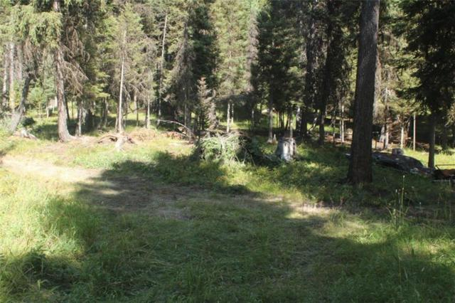 2368 Double Arrow Road, Seeley Lake, Other-See Remarks, MT 59868 (MLS #289747) :: The Ashley Delp Team
