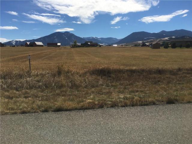 63 Grand View Drive, Red Lodge, MT 59068 (MLS #289799) :: Realty Billings