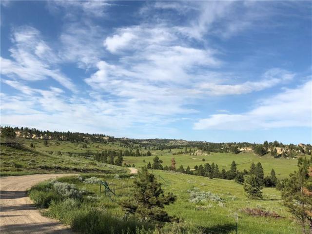 TBD Sarpy Creek Road, Hysham, MT 59038 (MLS #289869) :: The Ashley Delp Team