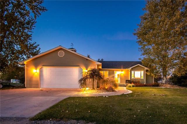 1819 Natalie St, Billings, MT 59105 (MLS #289886) :: Search Billings Real Estate Group