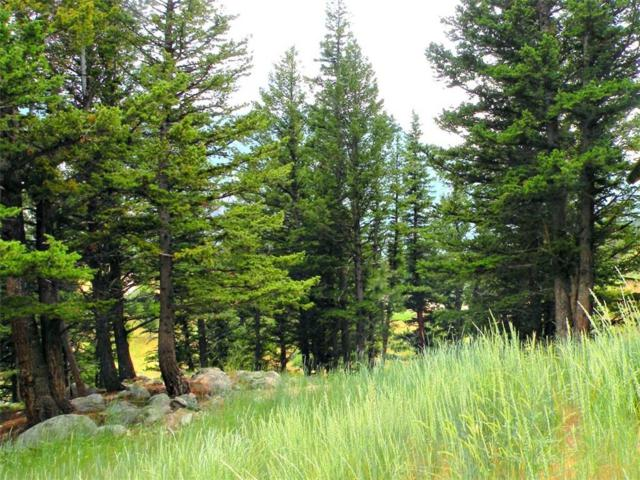LOT 120 Skyview Trail, Nye, MT 59061 (MLS #290924) :: Realty Billings