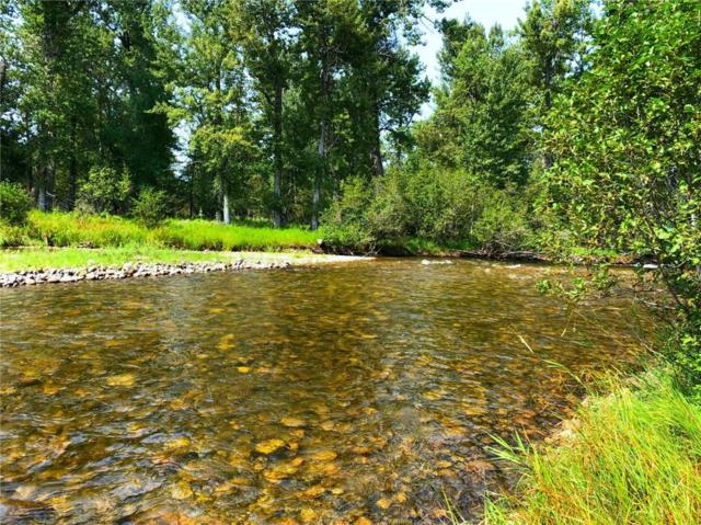 43 Acres Highway 78 East Rosebud River, Absarokee, MT 59001 (MLS #291166) :: The Ashley Delp Team