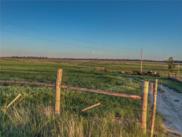 170 Hougardy Lane, Roundup, MT 59072 (MLS #291860) :: Realty Billings