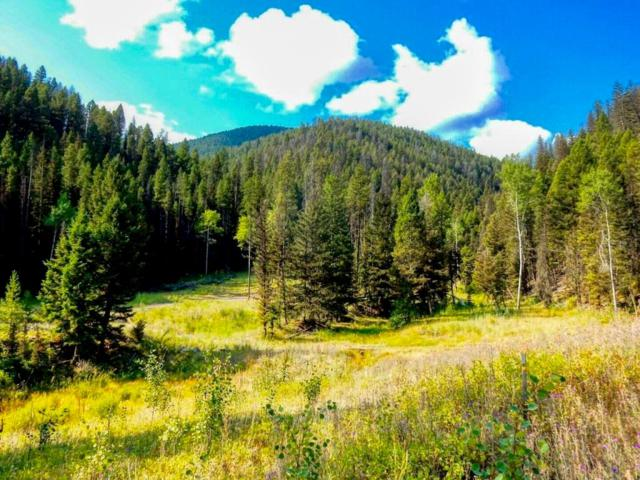 Tract 5 Cornish Gulch Rd, Philipsburg, Other-See Remarks, MT 59858 (MLS #291978) :: The Ashley Delp Team