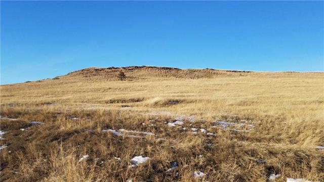 20 Crow Child Trail, Absarokee, MT 59001 (MLS #291997) :: The Ashley Delp Team