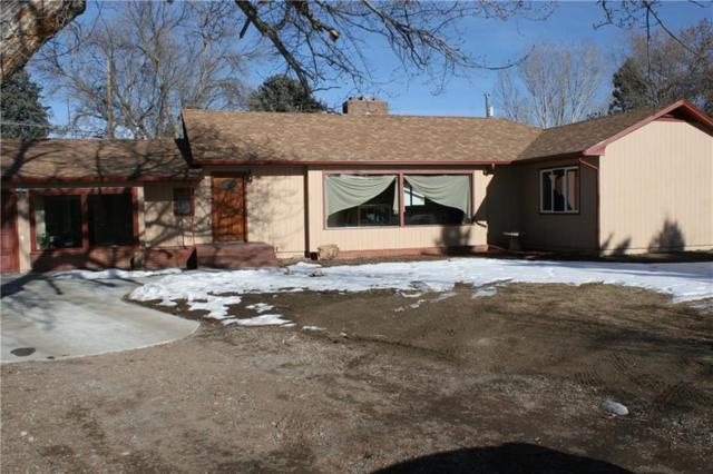 1217 Lewis Avenue, Billings, MT 59102 (MLS #292009) :: The Ashley Delp Team