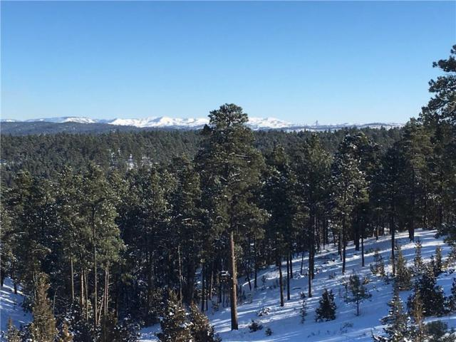 Tract 8 Meadow Way, Roundup, MT 59072 (MLS #292831) :: The Ashley Delp Team