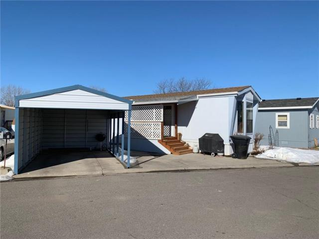 3 Lariat Circle, Billings, MT 59102 (MLS #292909) :: The Ashley Delp Team