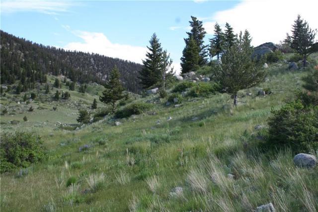 Lot 59 Cmr Trail, Nye, MT 59061 (MLS #292950) :: Search Billings Real Estate Group