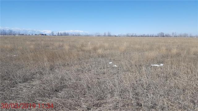 Lot 5 Clear Creek Road, Roberts, MT 59070 (MLS #293028) :: Search Billings Real Estate Group