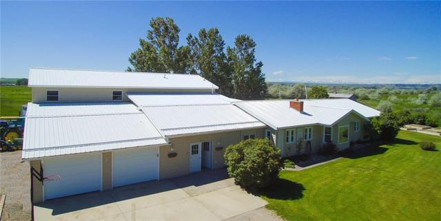 62A Trewin School Road, Park City, MT 59063 (MLS #294419) :: Search Billings Real Estate Group