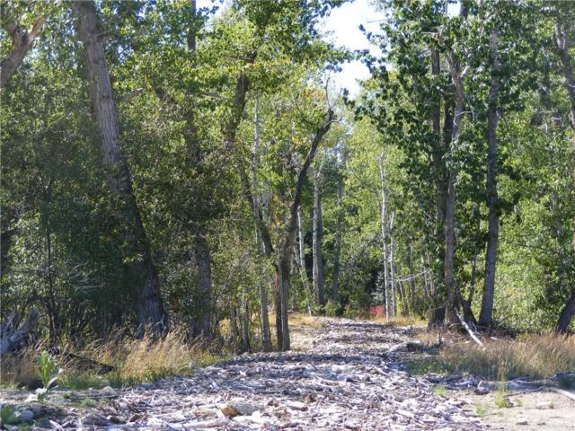 02 Woodlands Dr. Drive, Red Lodge, MT 59068 (MLS #294520) :: The Ashley Delp Team