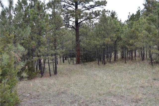 NHN Twisted Pines, Roundup, MT 59072 (MLS #297083) :: The Ashley Delp Team