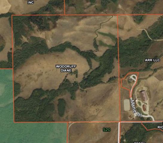 160 Acres Fox Road, Red Lodge, MT 59068 (MLS #297212) :: The Ashley Delp Team