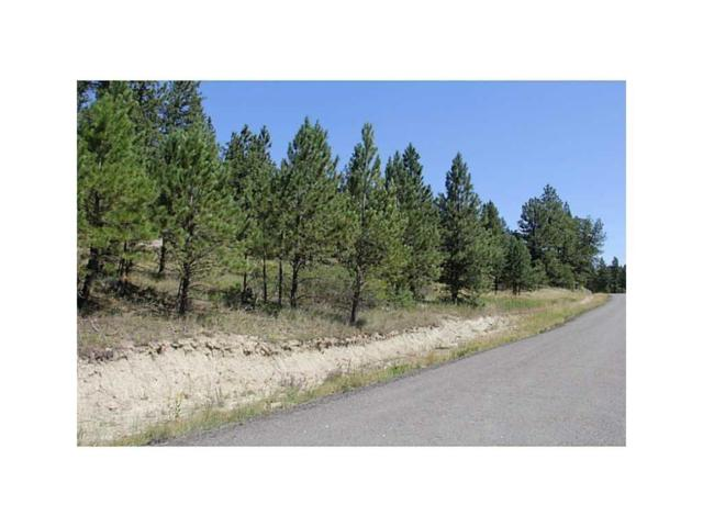 0 Johnnys Coal Rd Road, Roundup, MT 59072 (MLS #297269) :: Realty Billings