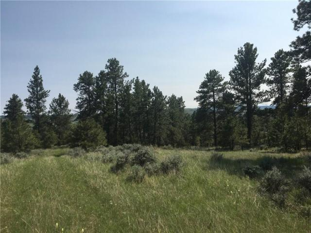 Lot 11 Ponderosa Ridge, Columbus, MT 59019 (MLS #297448) :: The Ashley Delp Team