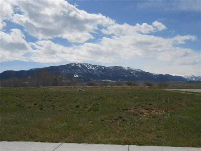 3021 Baneberry, Red Lodge, MT 59068 (MLS #297526) :: MK Realty