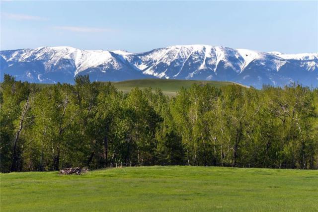 122 Acres Aspen Meadows/Hwy 78, Absarokee, MT 59001 (MLS #297670) :: Realty Billings