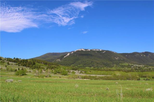 TRACT 23 Bear Run Ln, Red Lodge, MT 59068 (MLS #297684) :: MK Realty