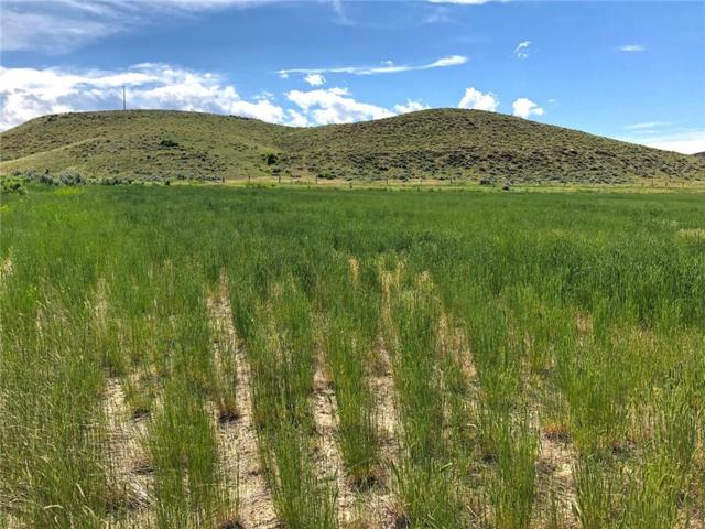 Lot 3 Highway 72, Belfry, MT 59008 (MLS #298174) :: Realty Billings