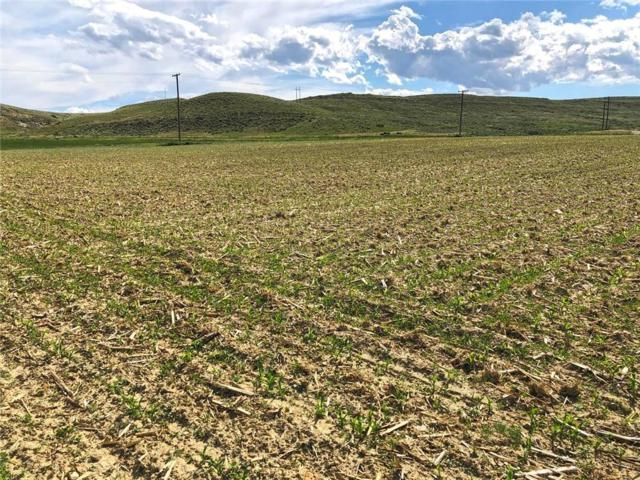 Lot 5 Highway 72, Belfry, MT 59008 (MLS #298177) :: Realty Billings