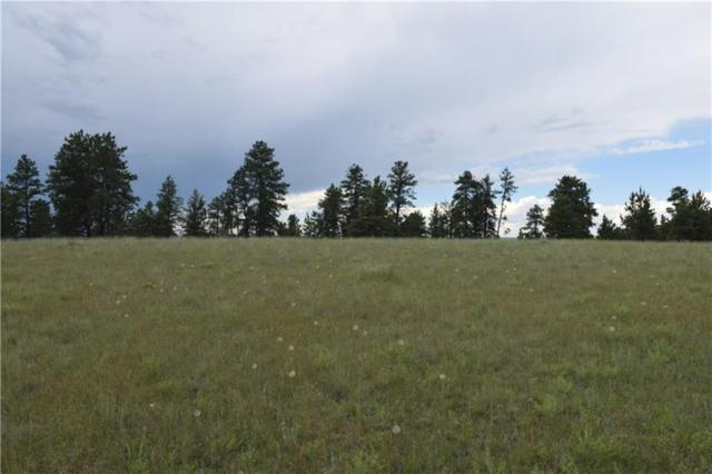 TBD Pine Crest Road Lot #124, Columbus, MT 59019 (MLS #298261) :: The Ashley Delp Team