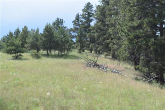 TBD Pine Crest Road Lot #123, Columbus, MT 59019 (MLS #298339) :: The Ashley Delp Team