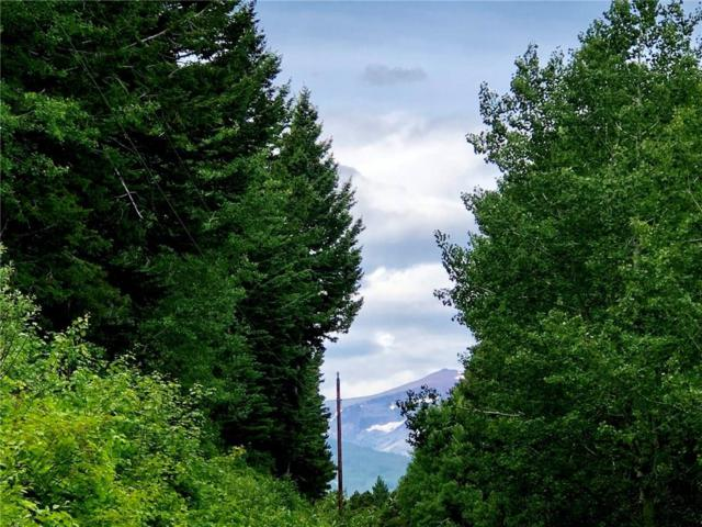 0 Big Springs Trail, East Glacier Park, Other-See Remarks, MT 59434 (MLS #298574) :: Realty Billings