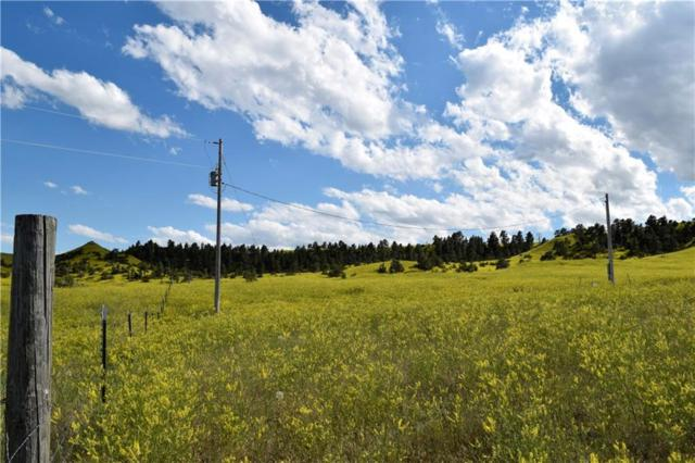 20 Acres Lower River Road, Other-See Remarks, MT 59087 (MLS #298587) :: Realty Billings