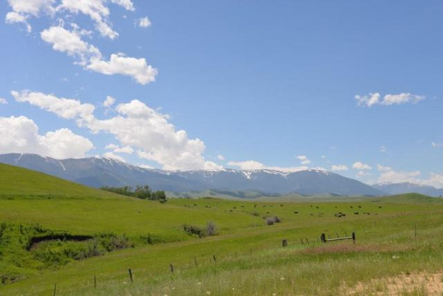 28 Acres Spring Coulee, Red Lodge, MT 59068 (MLS #299667) :: The Ashley Delp Team