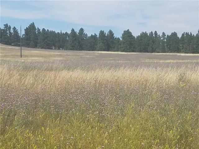 lot 49 Bundy Road, Lavina, MT 59106 (MLS #299850) :: MK Realty