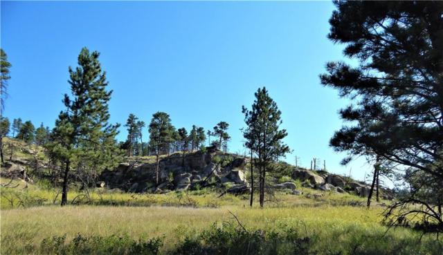NHN Eagle Ridge Road, Roundup, MT 59073 (MLS #299998) :: The Ashley Delp Team