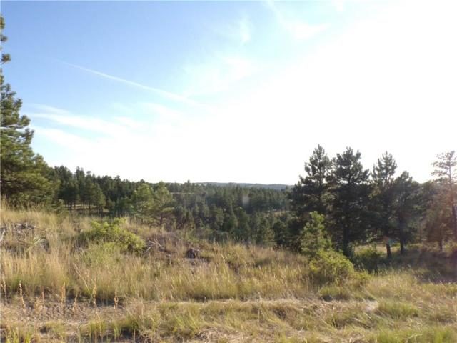 2 Mine Road Road, Roundup, MT 59072 (MLS #300006) :: The Ashley Delp Team