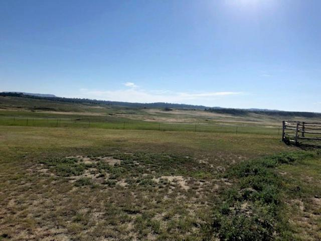 2705 Hwy 87 S, Roundup, MT 59072 (MLS #300048) :: The Ashley Delp Team